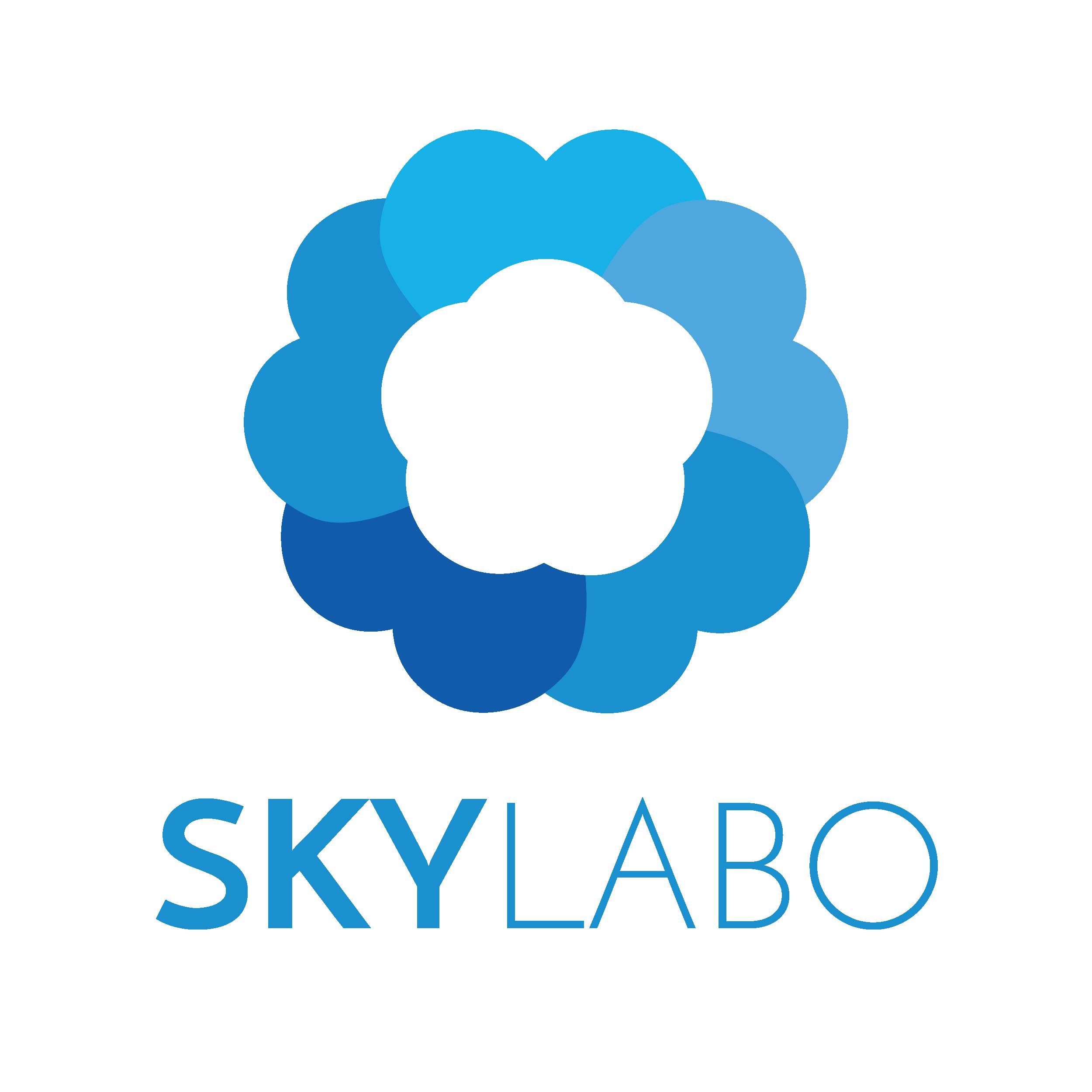 skylabo LOGOS-11.png