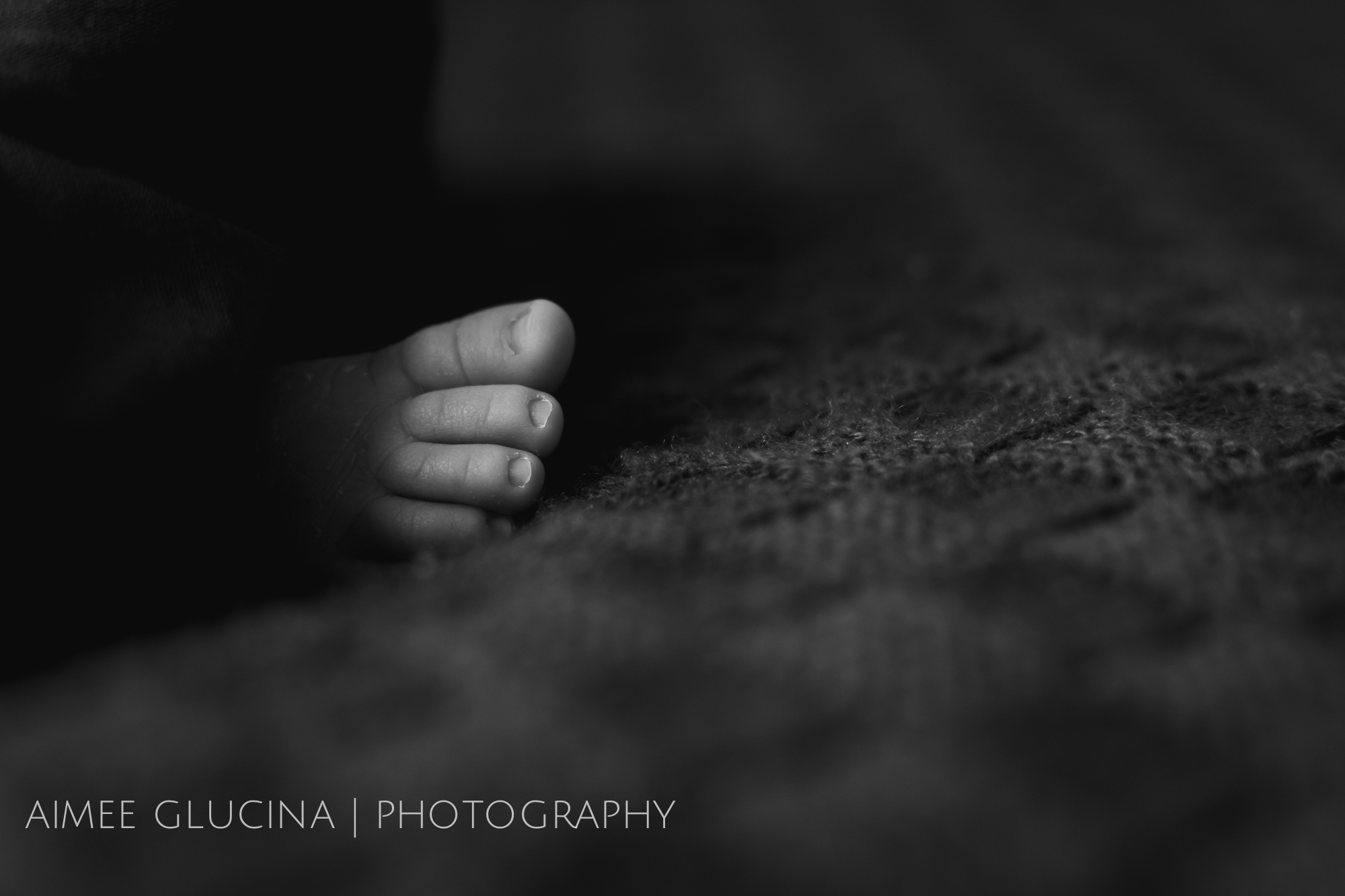 Oswald Warren | Auckland Lifestyle Newborn Photographer (10 of 29).jpg