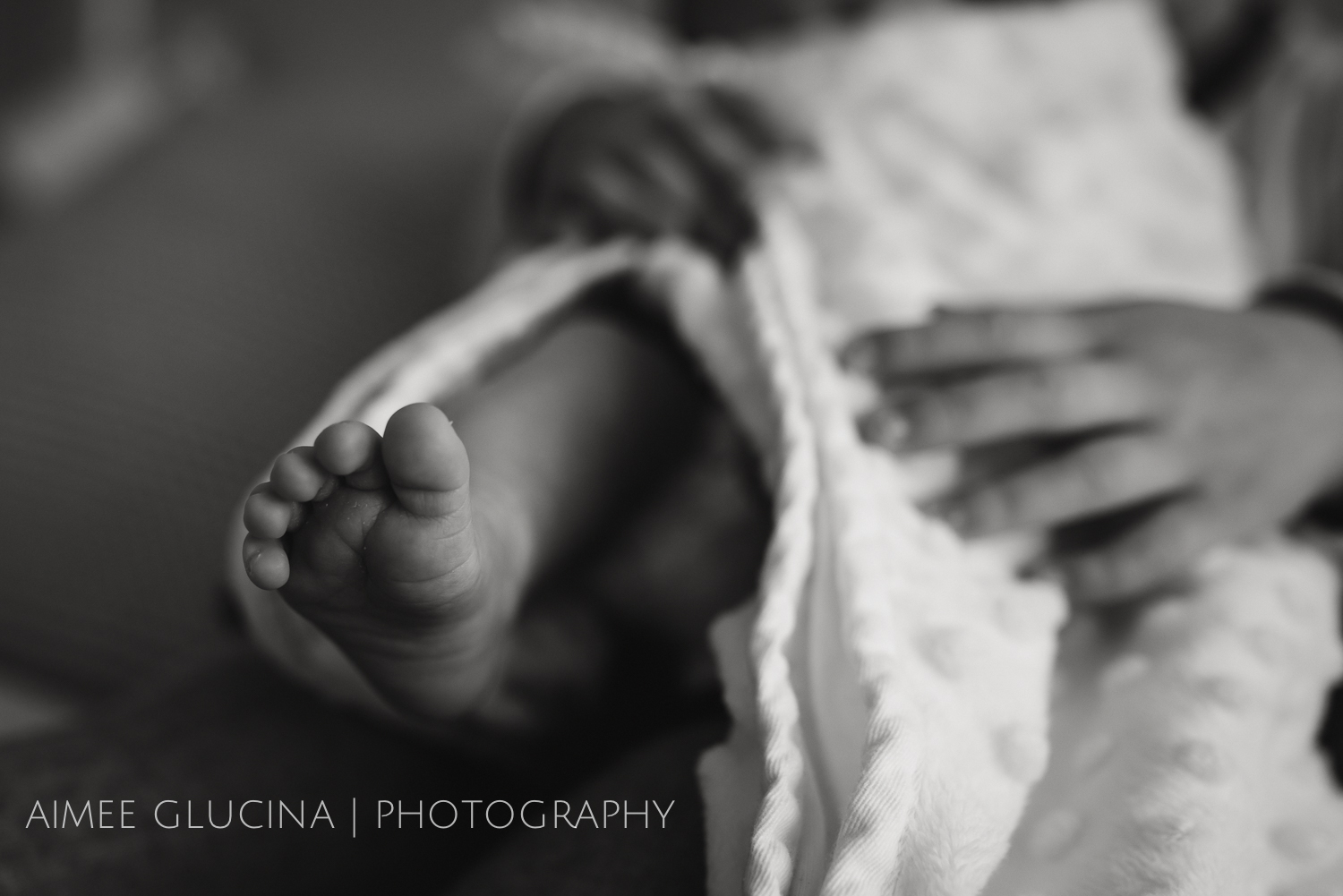 Edison Auckland Lifestyle Newborn Photo Session  (2 of 23).jpg