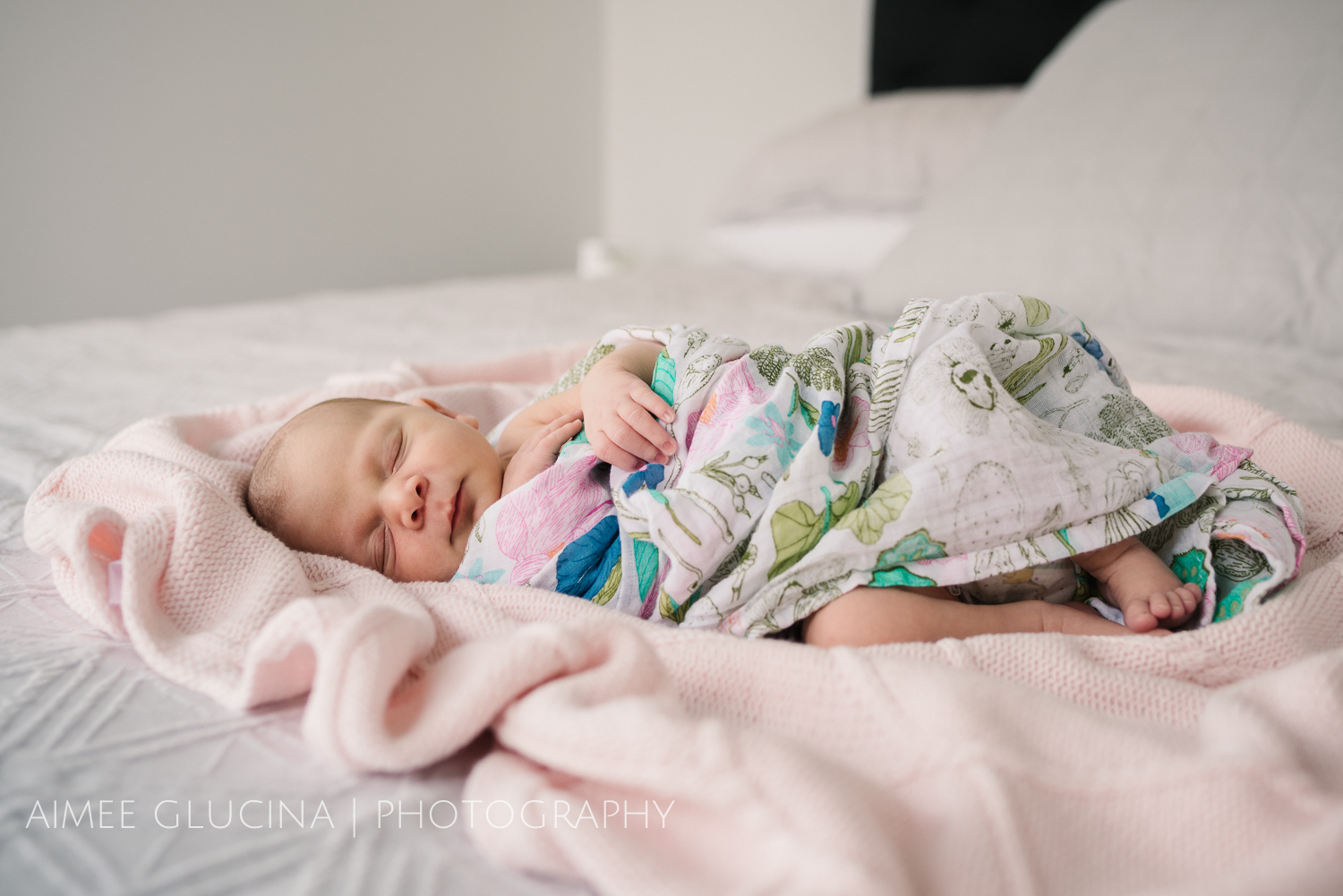 Sophie Hay Newborn Session by Aimee Glucina Photography-9.jpg