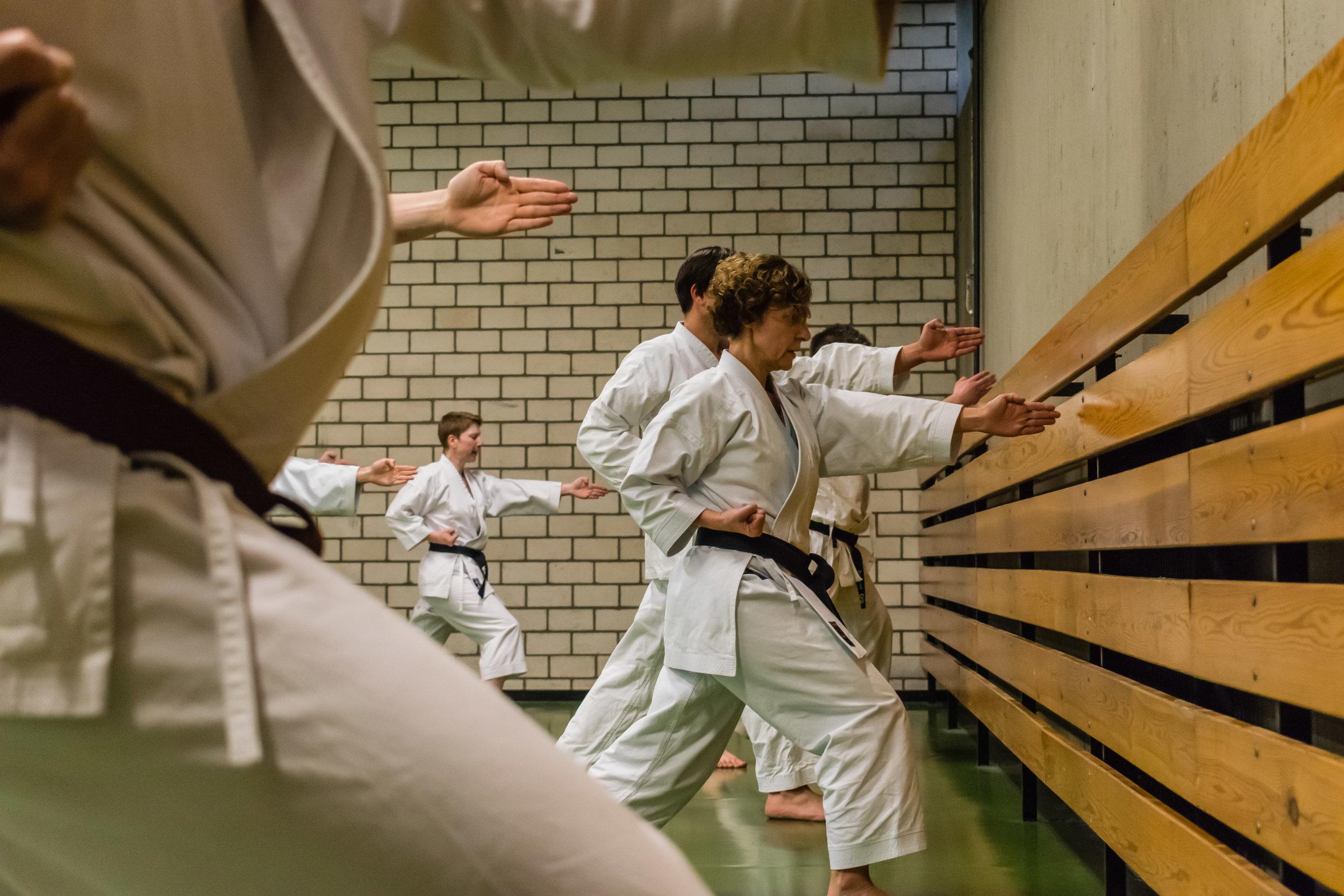 Karate-BrownLeatherBook-0106.jpg