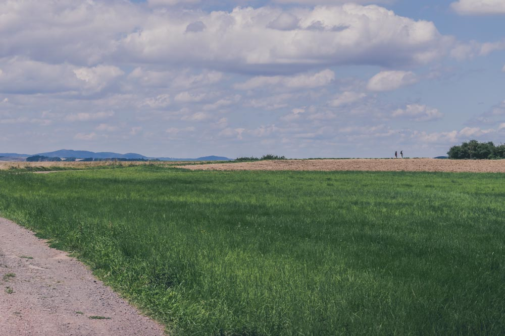 Cochem-2565.jpg