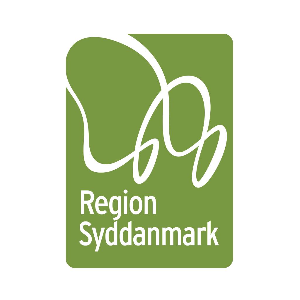 Asger Steenholdt - Region Syddanmark.jpeg