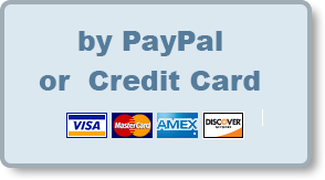 byPayPal.png