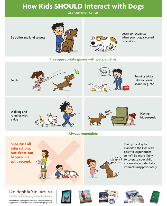 How children should interact with a dog.png