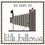 LITTLE BELLOWS.jpg