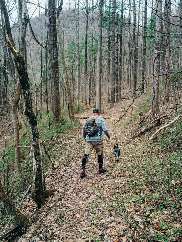 Walking the old logging trails.