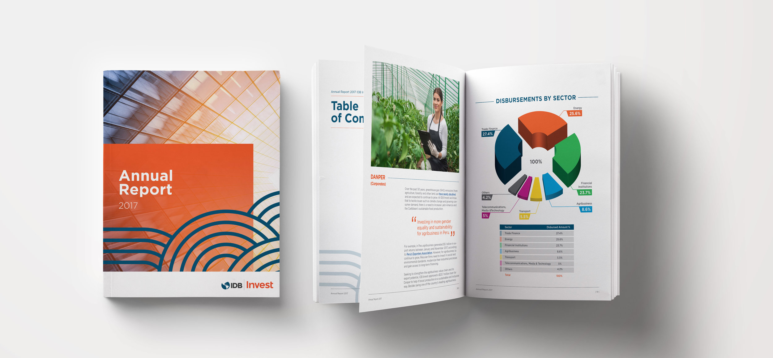 Annual Report Invest.jpg