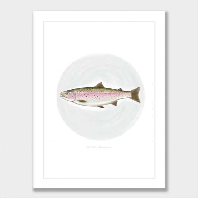 Old Trout by Glenn Jones