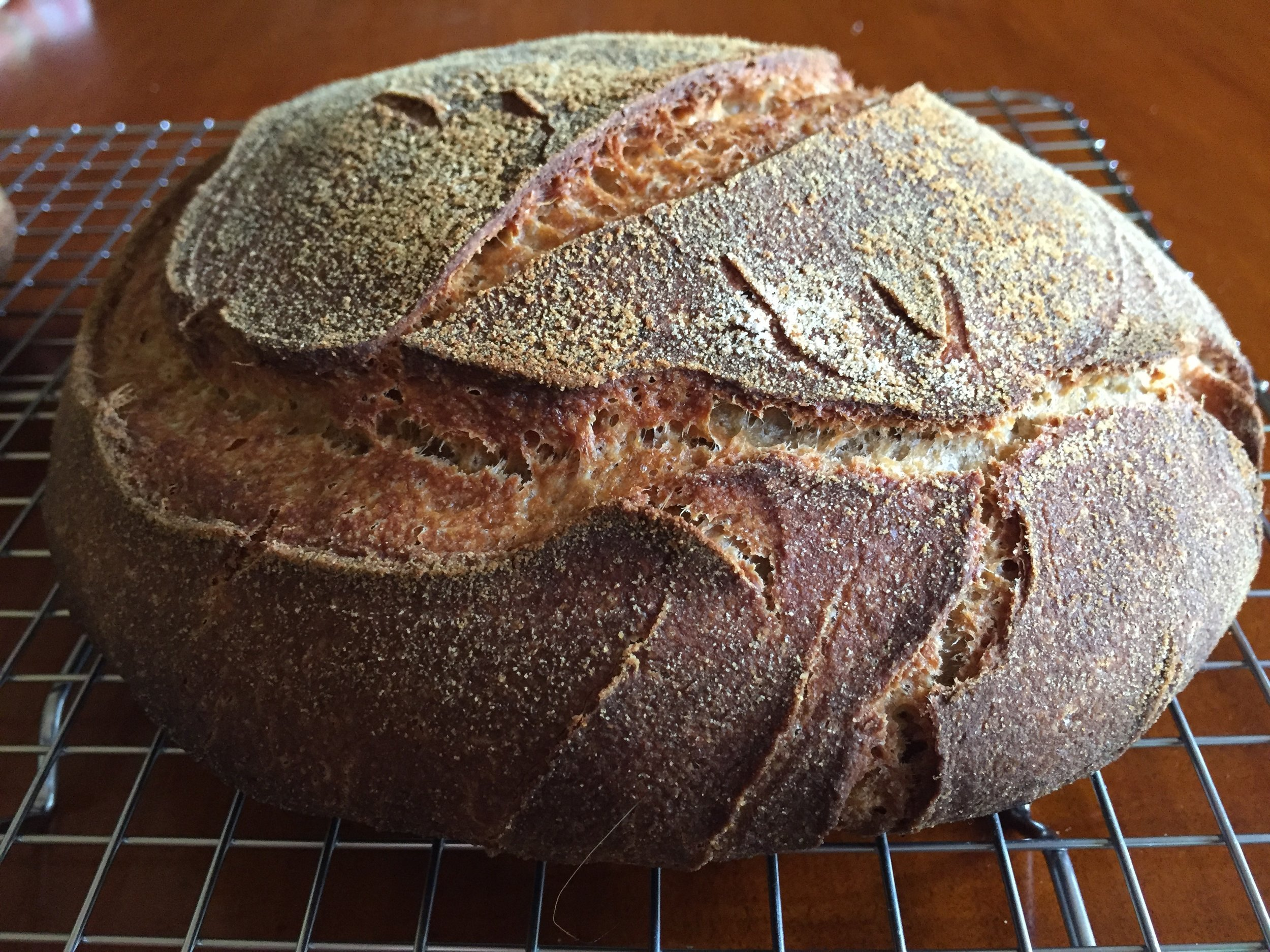 My new bread lame (pronounced 'lahm') did a fine job with the scoring today.