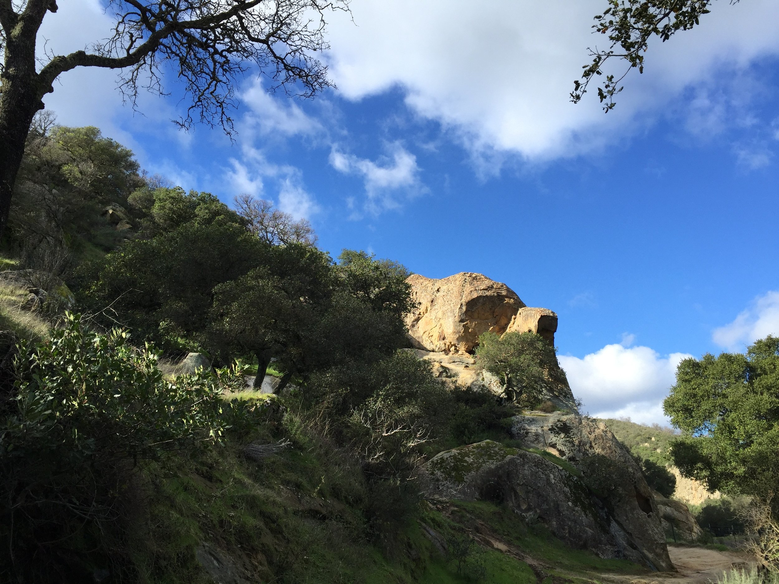 Diablo Foothills, Castle Rock park, this past Tuesday's hike