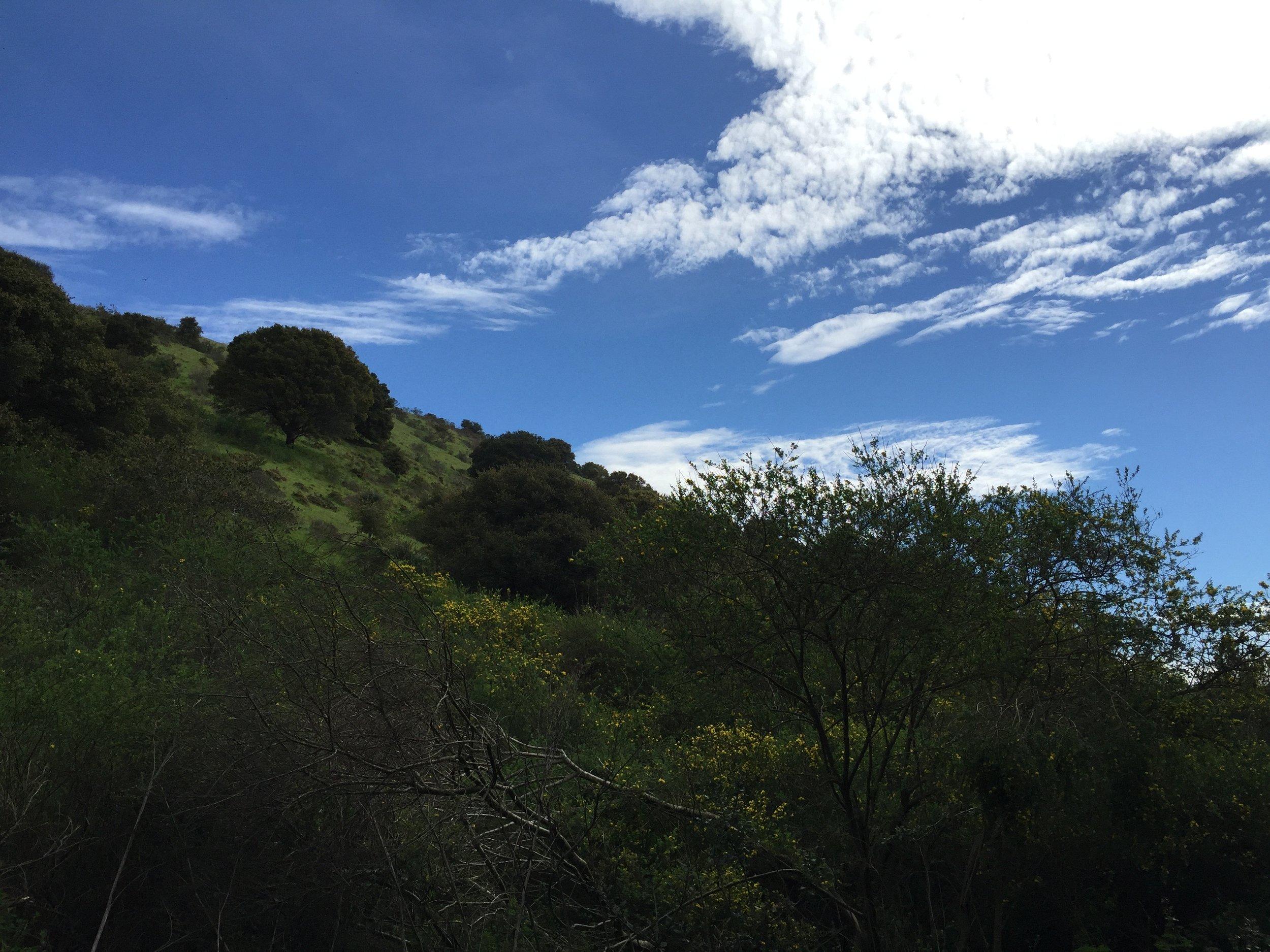 Leona Canyon Regional Park