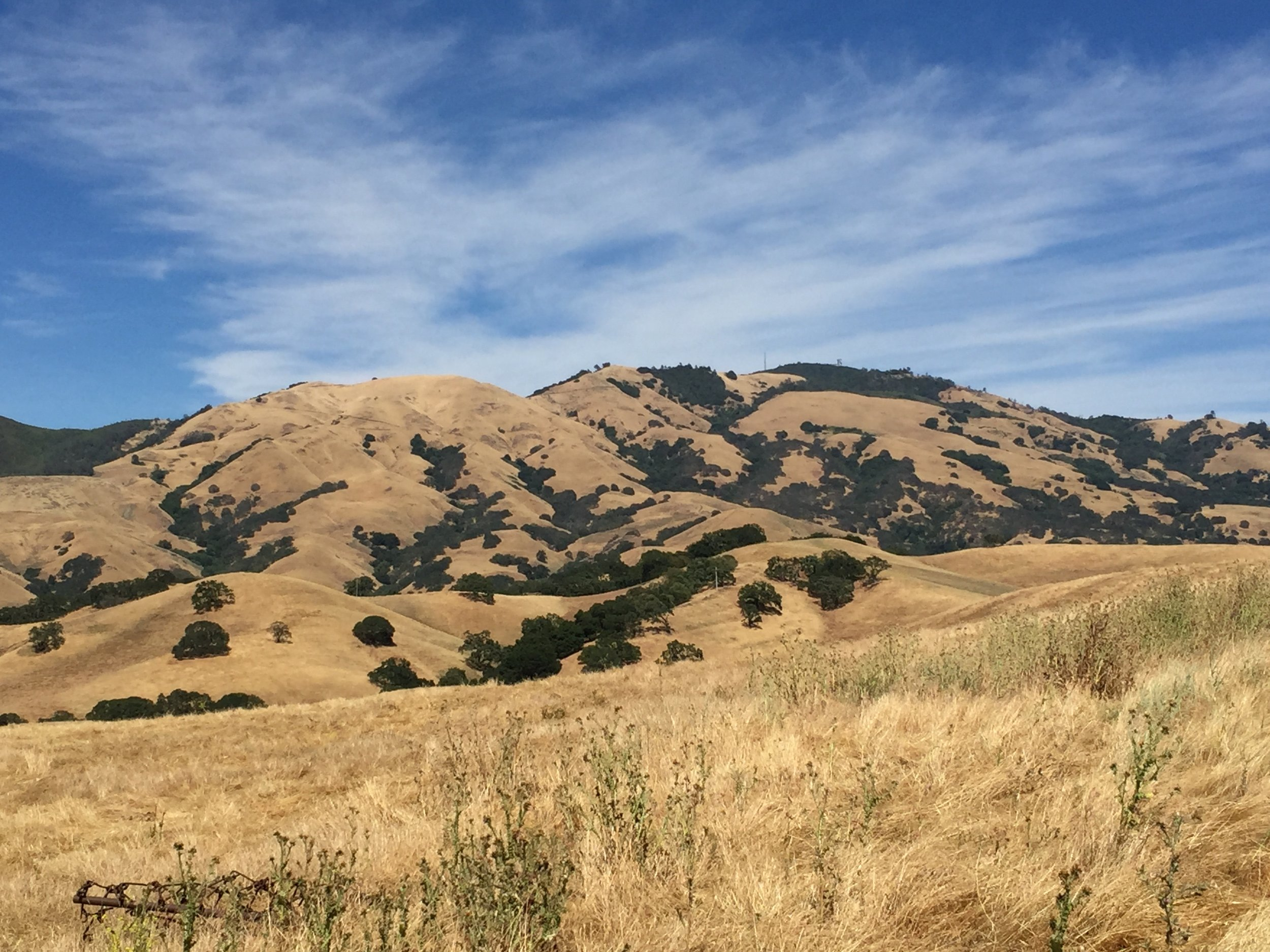Mt Diablo, as seen from China Wall