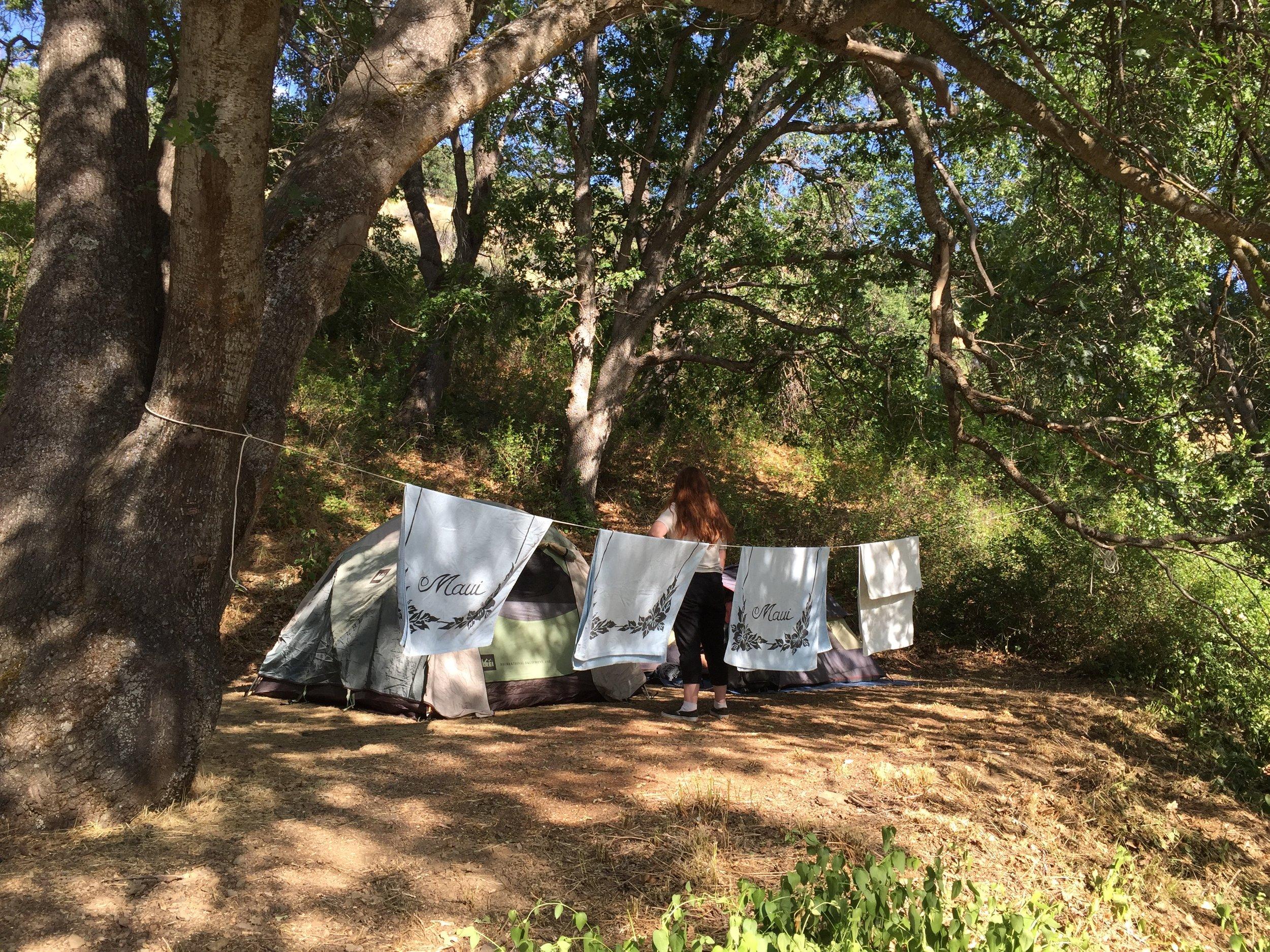 Campsite under the oaks
