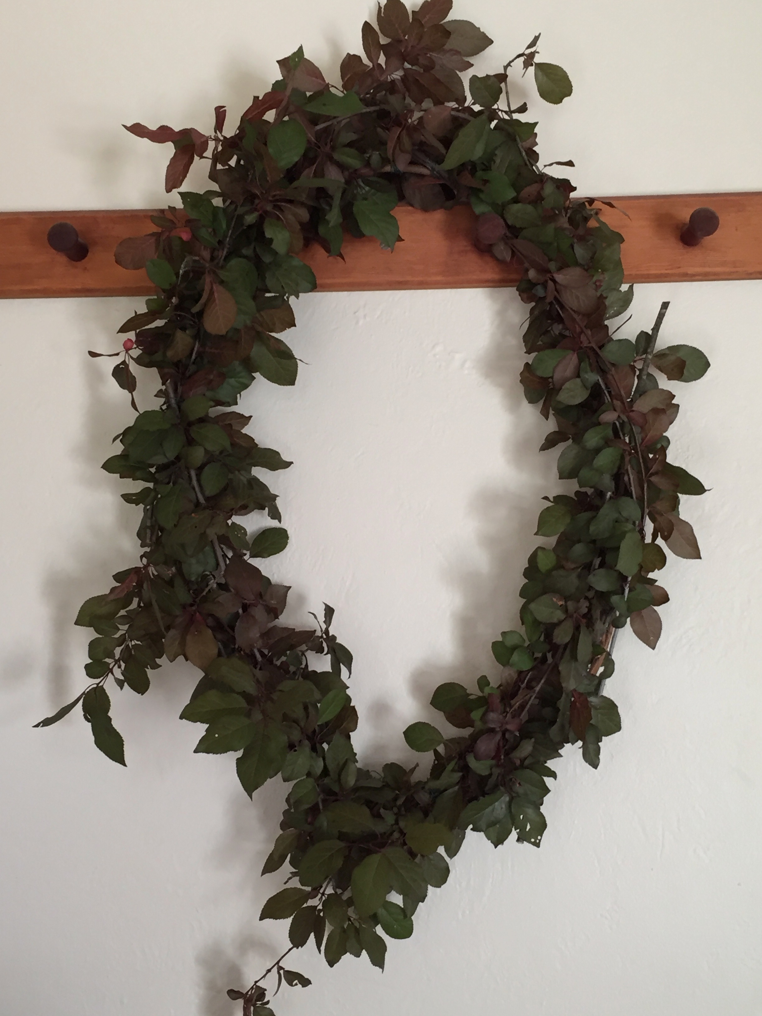 And lastly, here is the July wreath. I made it out of wild cherry plums that grow down by the (now dry) creek in the open space ( Prunus cerasifera) . This one has a half green, half red foliage, which is very pretty.