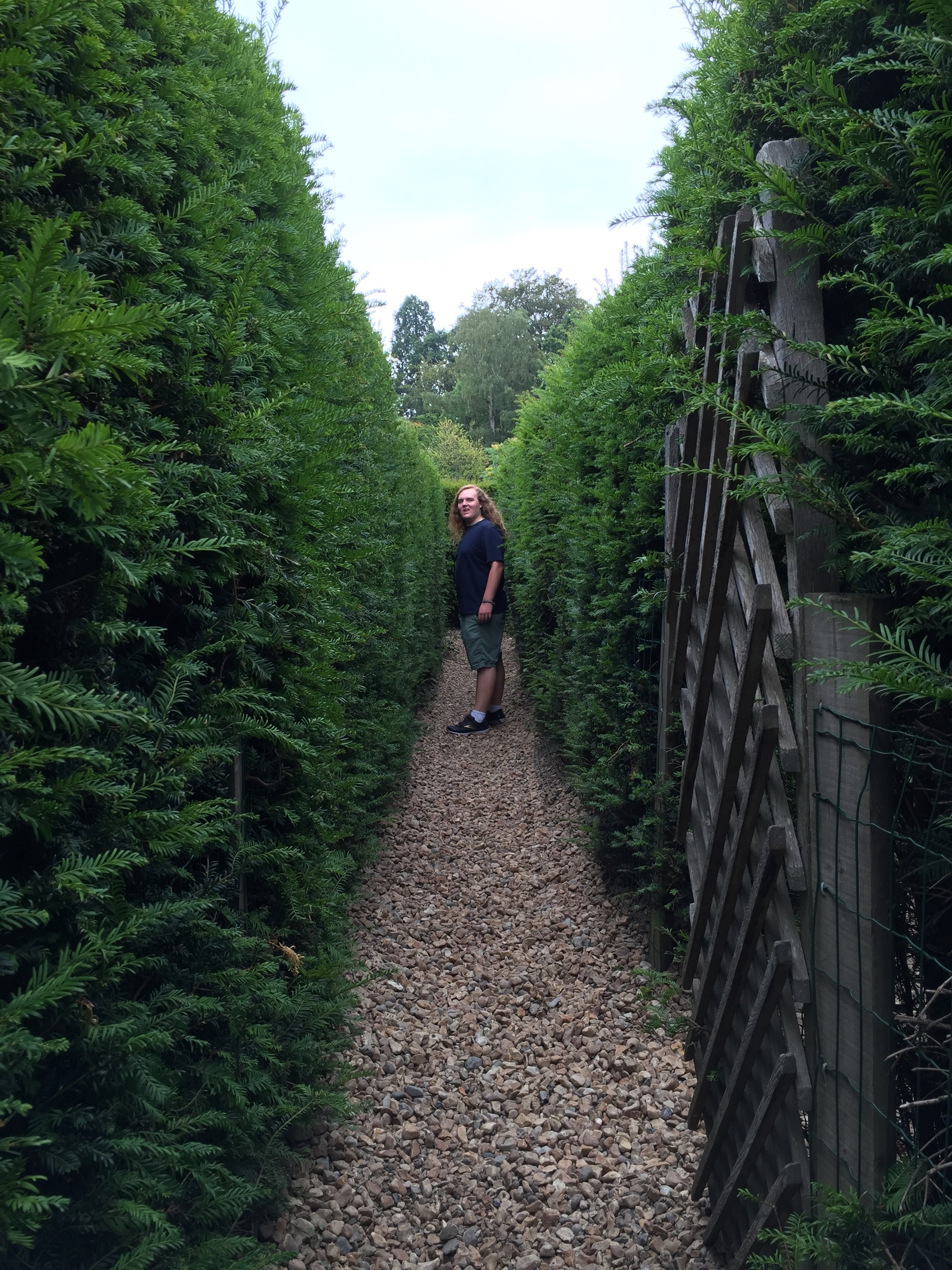 Adam working out the yew maze at Hever