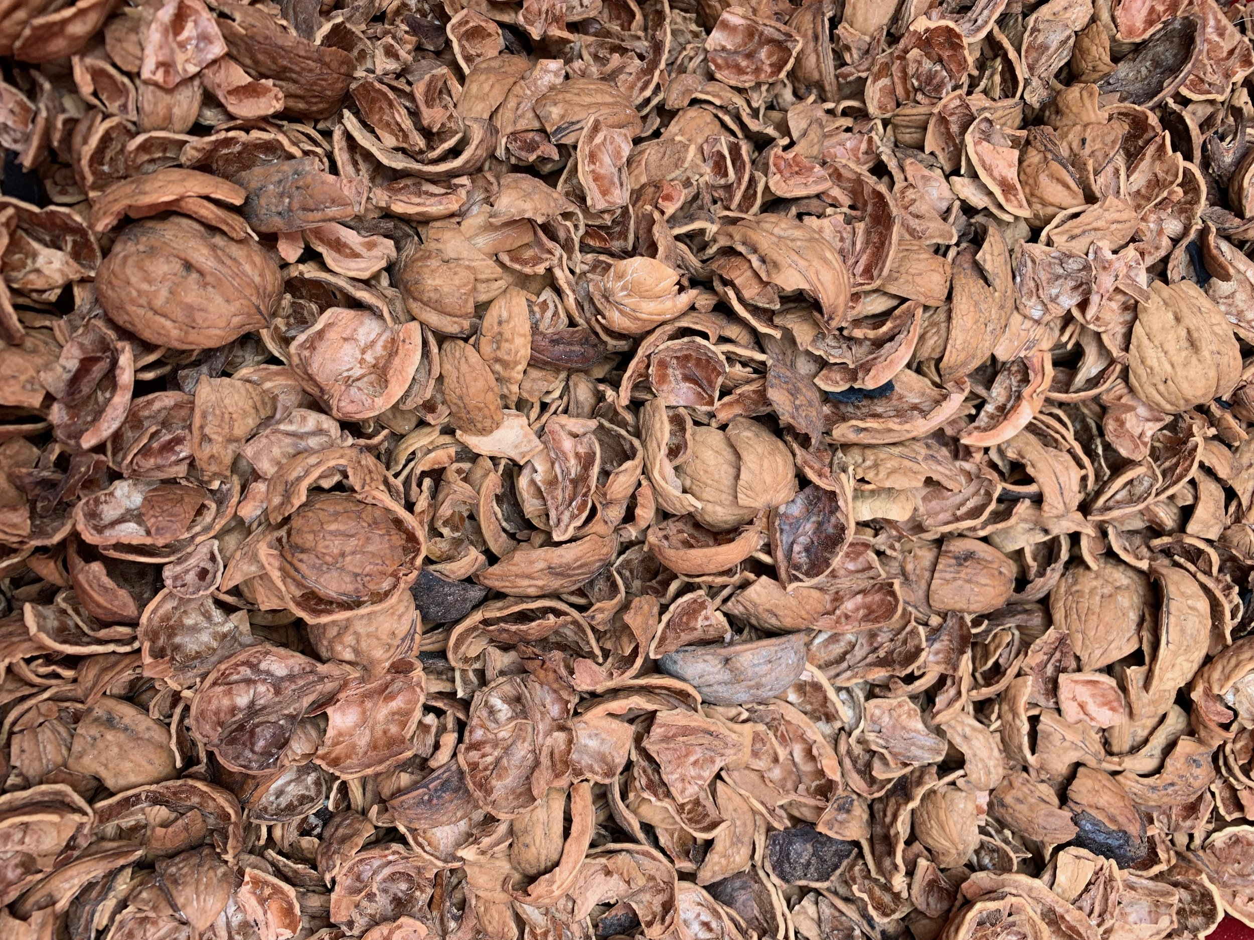 walnut hulls, an abundant waste product from California orchards, which will be turned into biochar