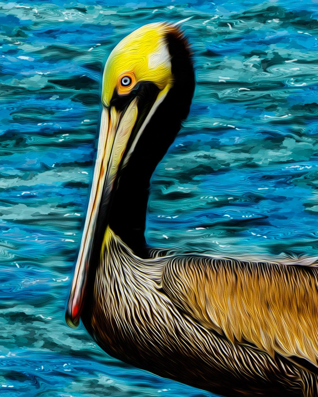 009_pelican7932b2b.jpg