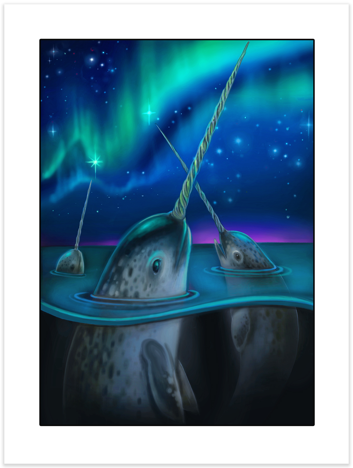 Narwhal Night