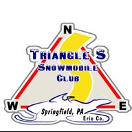 triangle s logo