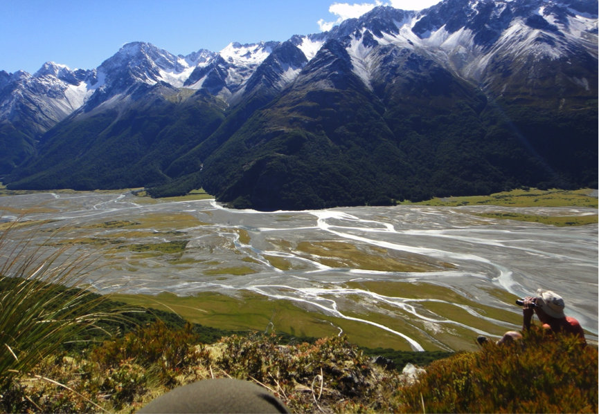 Would you hunt stags with a friend high in the hills or chase rabbits in the river flats?.- Hopkins Valley , New Zealand.