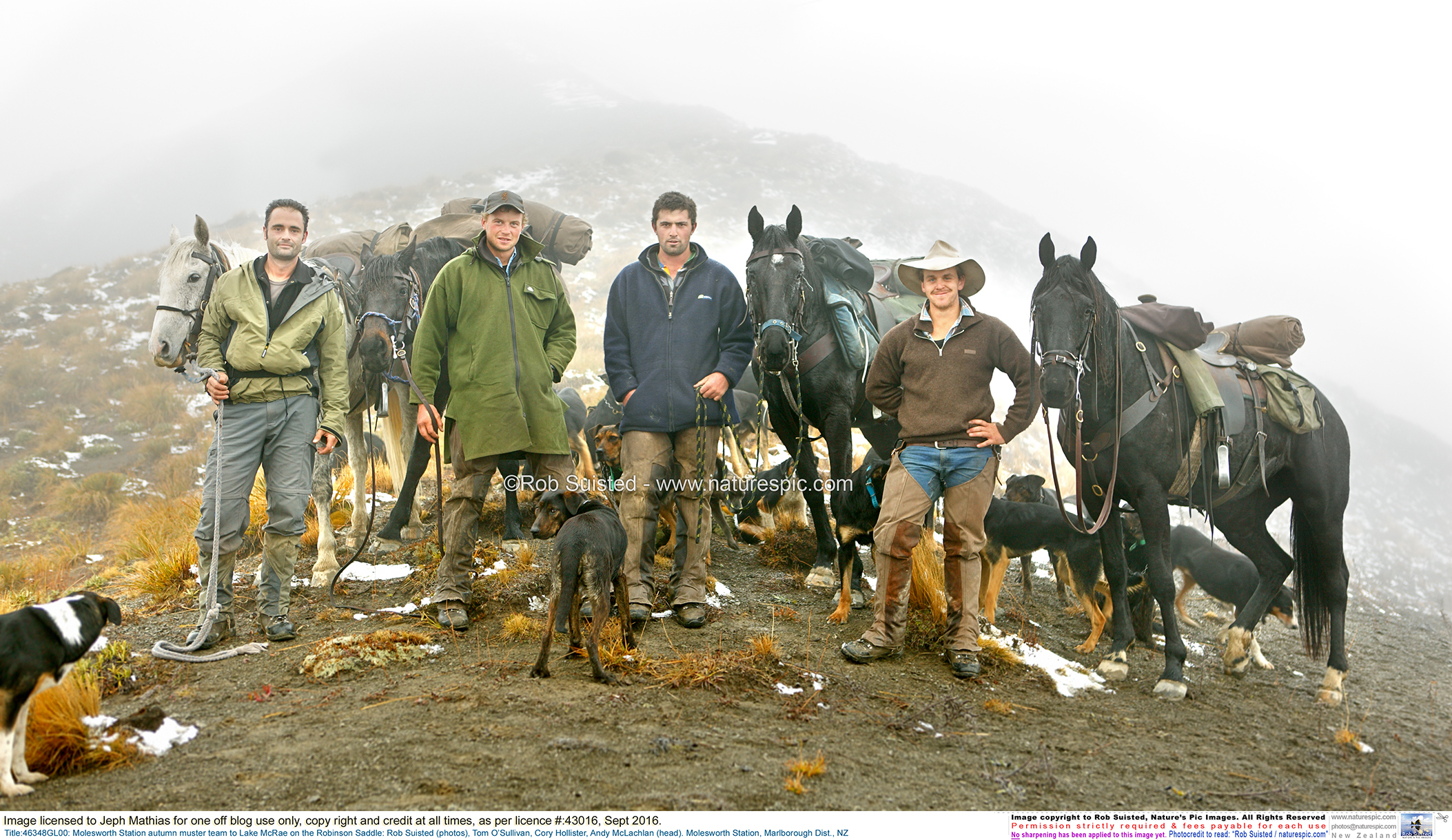The same story: Classic New Zealand High country musterers. Bare ground and degraded tussock around them attests to generations of profits on short human time scales and Nature's slower answer. Photo kindly supplied by Rob Suisted -  www.naturespic.com
