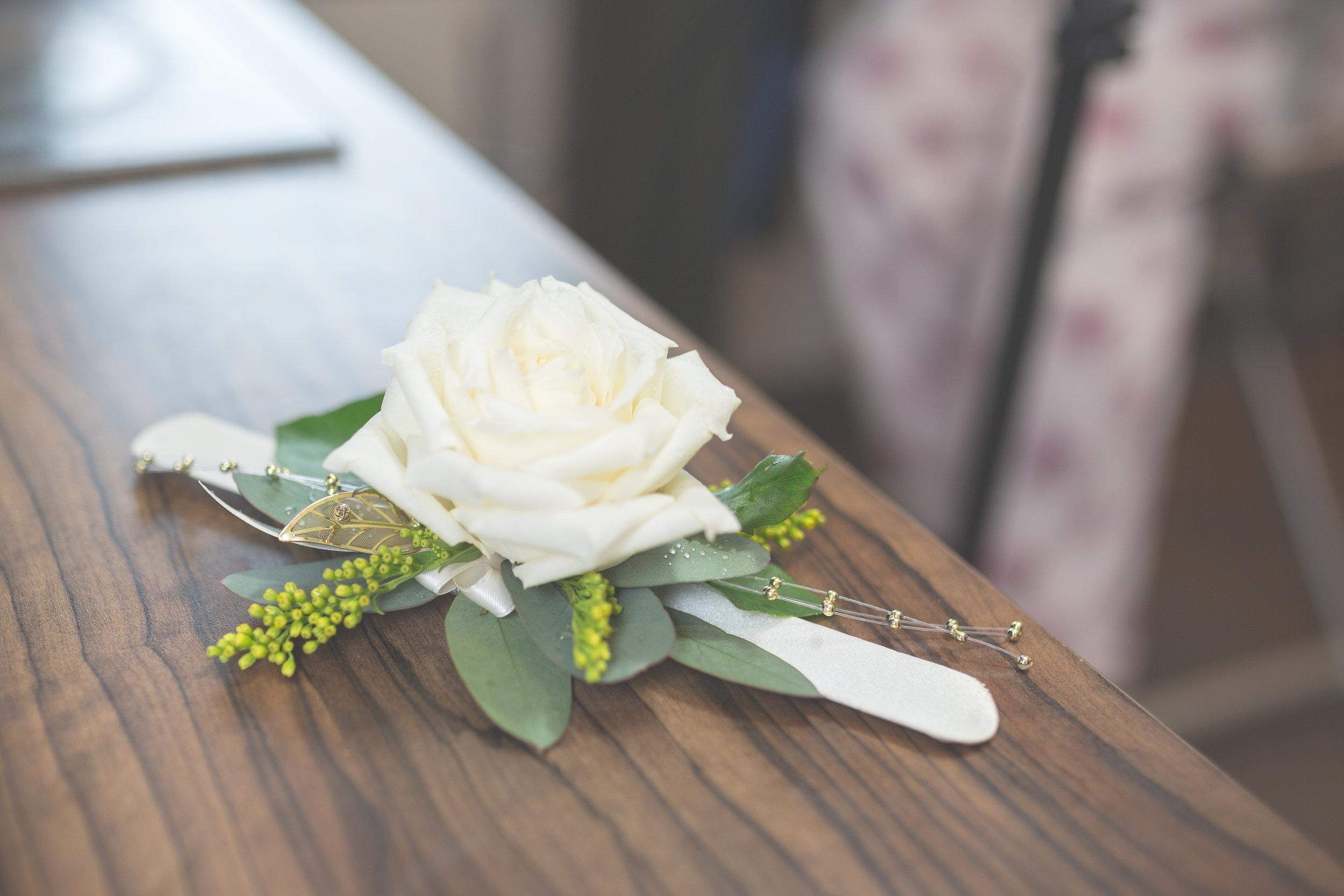 Antoinette & Stephen - Bridal Preparations | Brian McEwan Photography | Wedding Photographer Northern Ireland 130.jpg