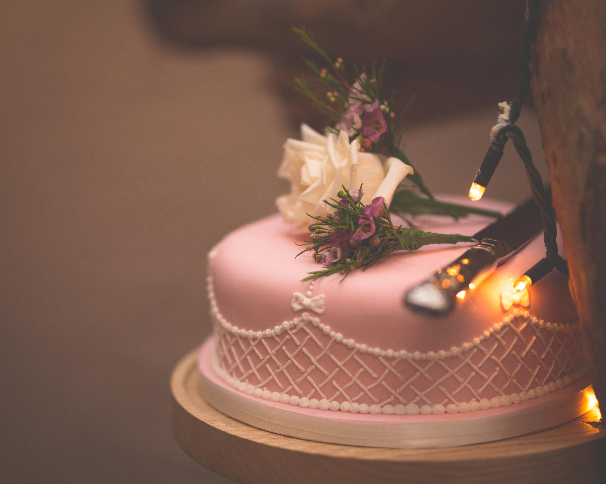 Brian McEwan Wedding Photography | Carol-Anne & Sean | The Speeches-119.jpg