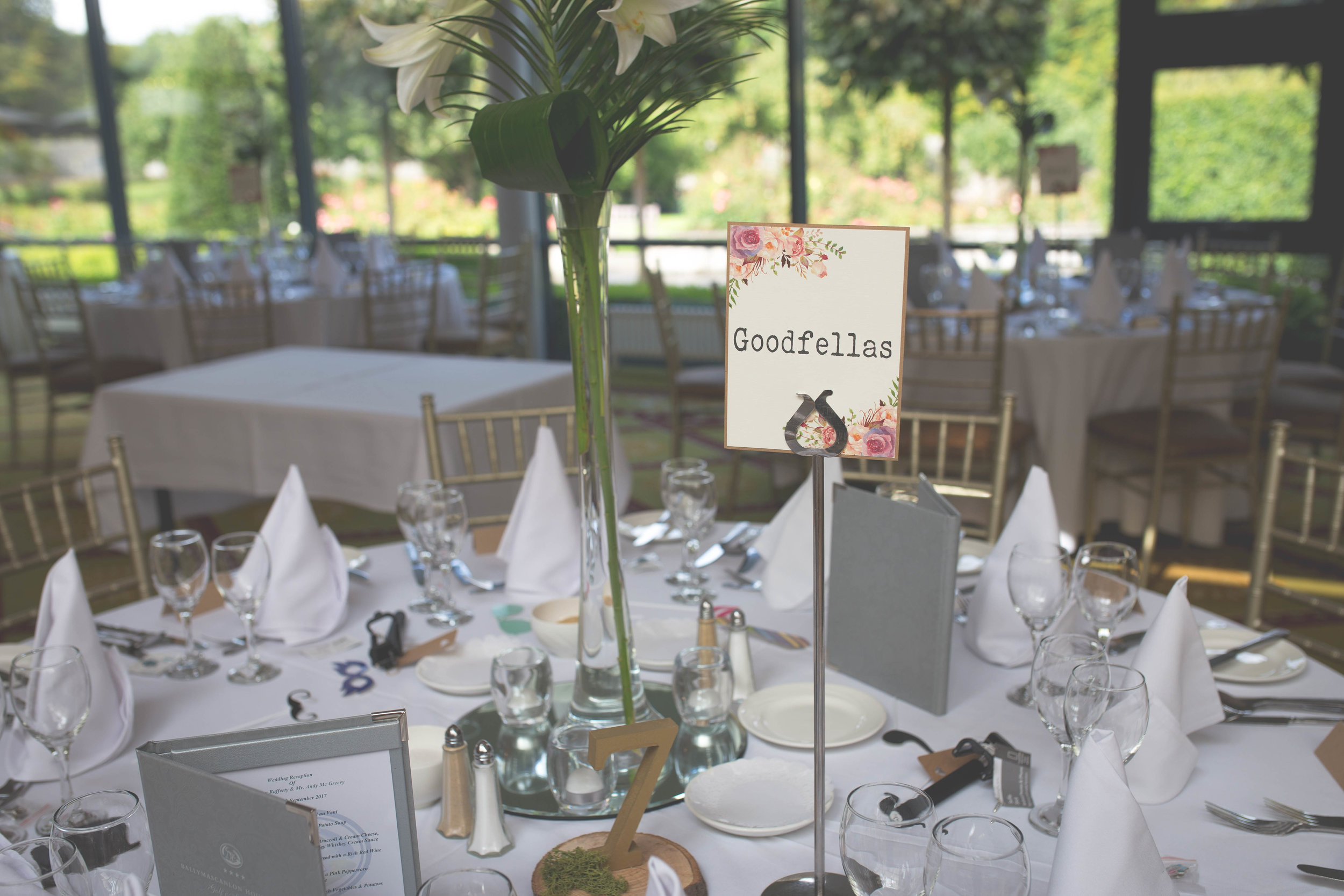 Aisling & Andy - Reception-29.jpg