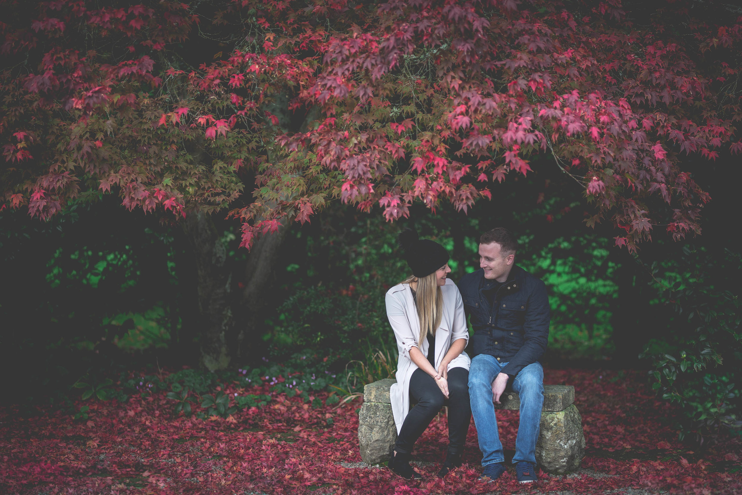 Conor & Mary-Jo Engagement Shoot Mount Stewart County Down-3.jpg