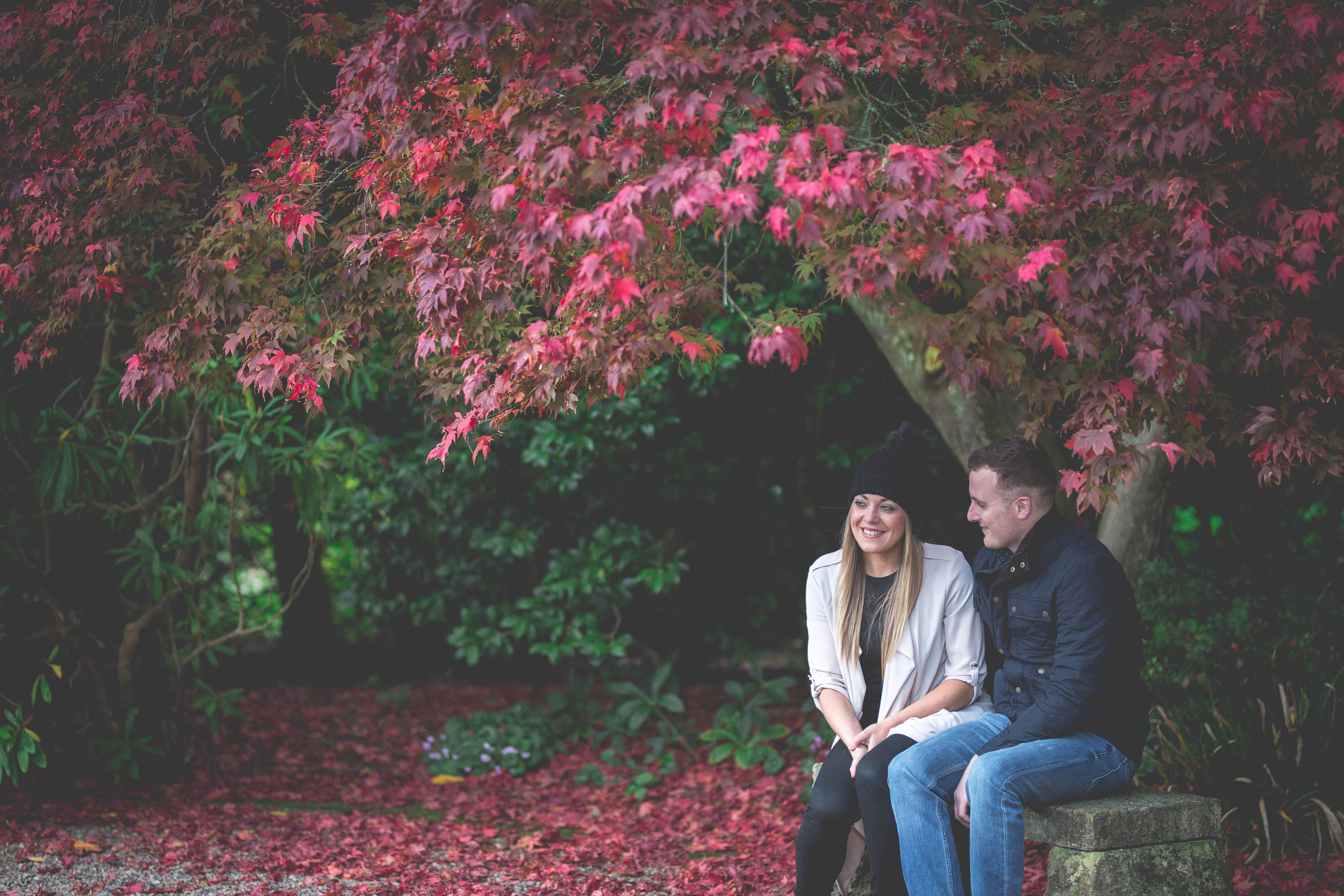 Conor & Mary-Jo Engagement Shoot Mount Stewart County Down-4.jpg