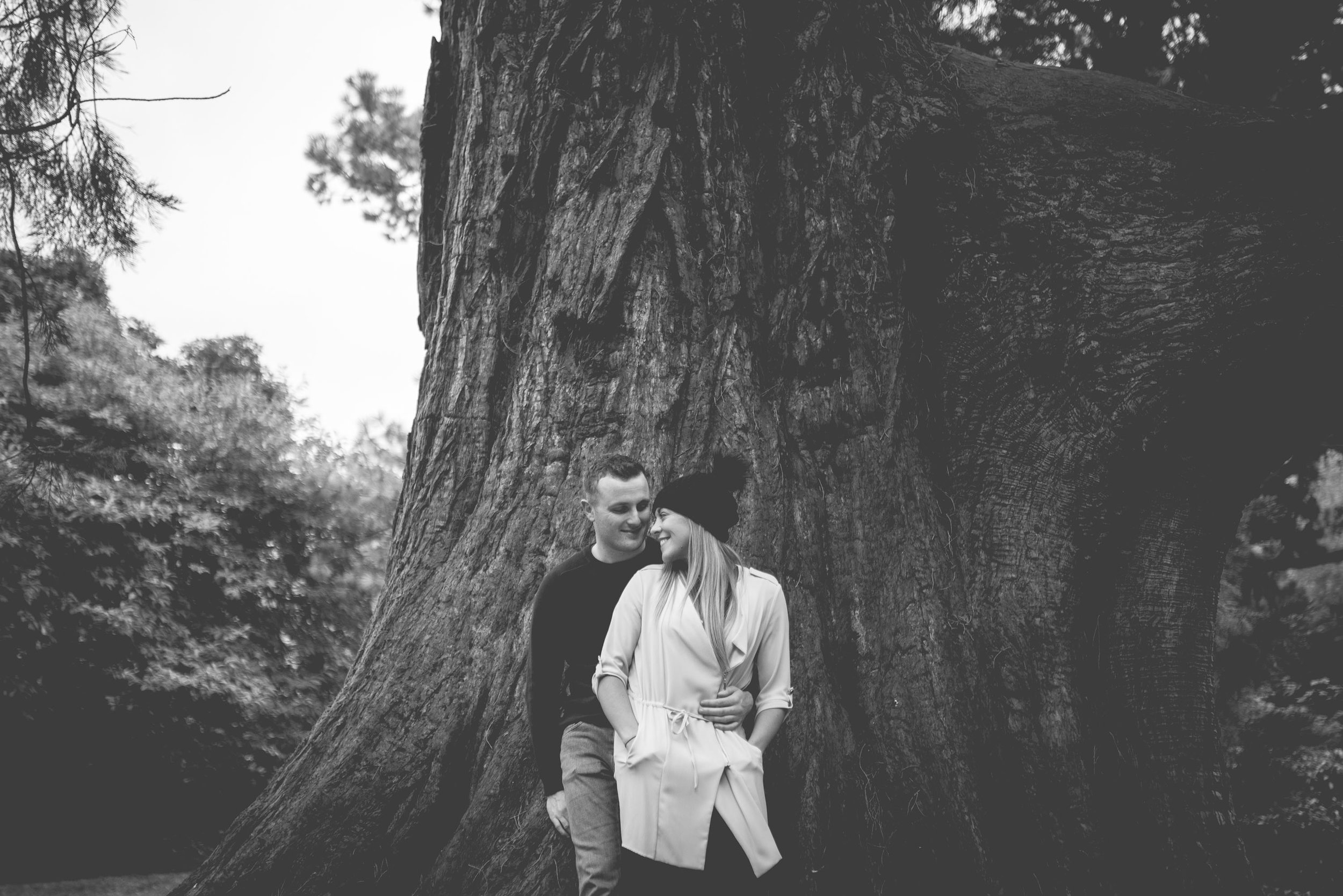 Conor & Mary-Jo Engagement Shoot Mount Stewart County Down-54.jpg