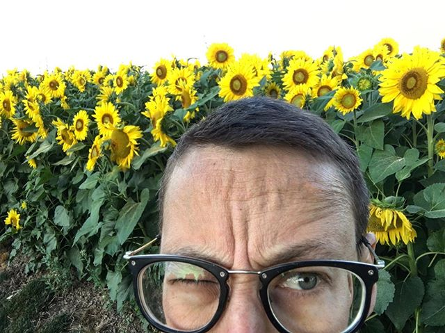 Not gonna lie - August is kicking my ass! Or maybe I'm kicking it's -  I'm not sure which but we're both wore out. Trying to be a little less serious about it. . . . #augustishardwork #somuchtoharvest #sunflowers #smallfarm #willowbarfarm #imhotandtired #pdxfarmer #pdxfarms #sauvieisland