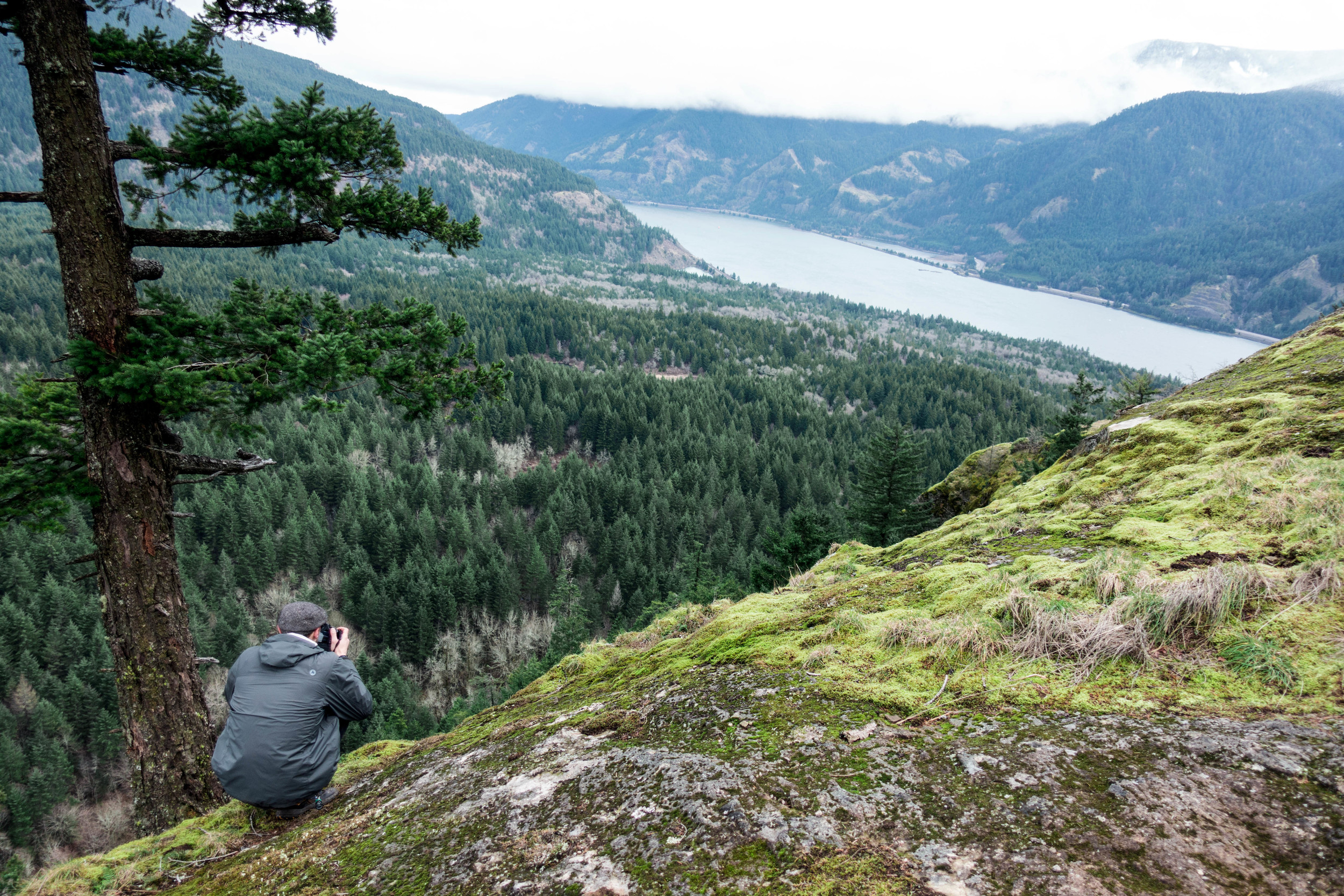 Viewpoint at Wind Mountain | Columbia River Gorge, WA
