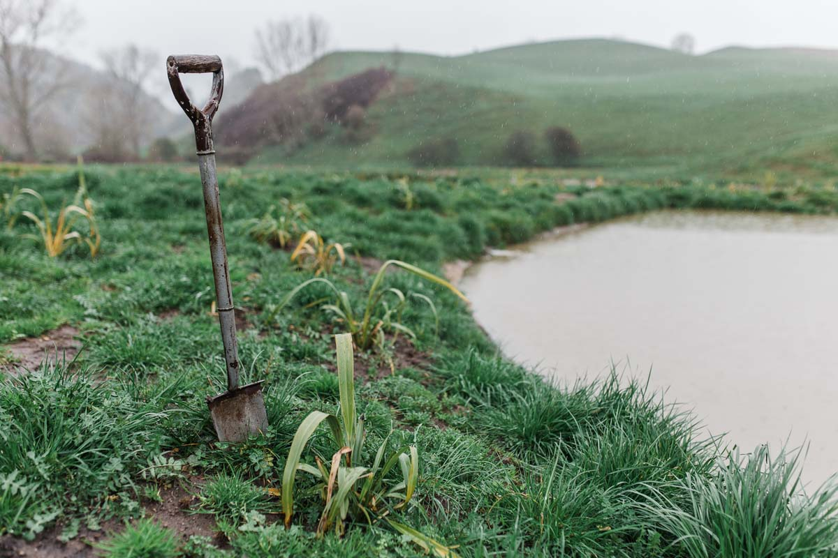 newzealand-farm-food-photographer (17of21).jpg