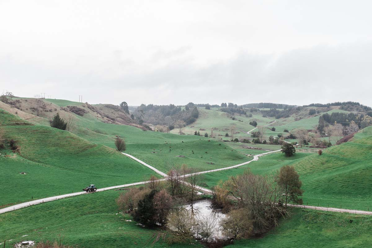 newzealand-farm-food-photographer (20of21).jpg