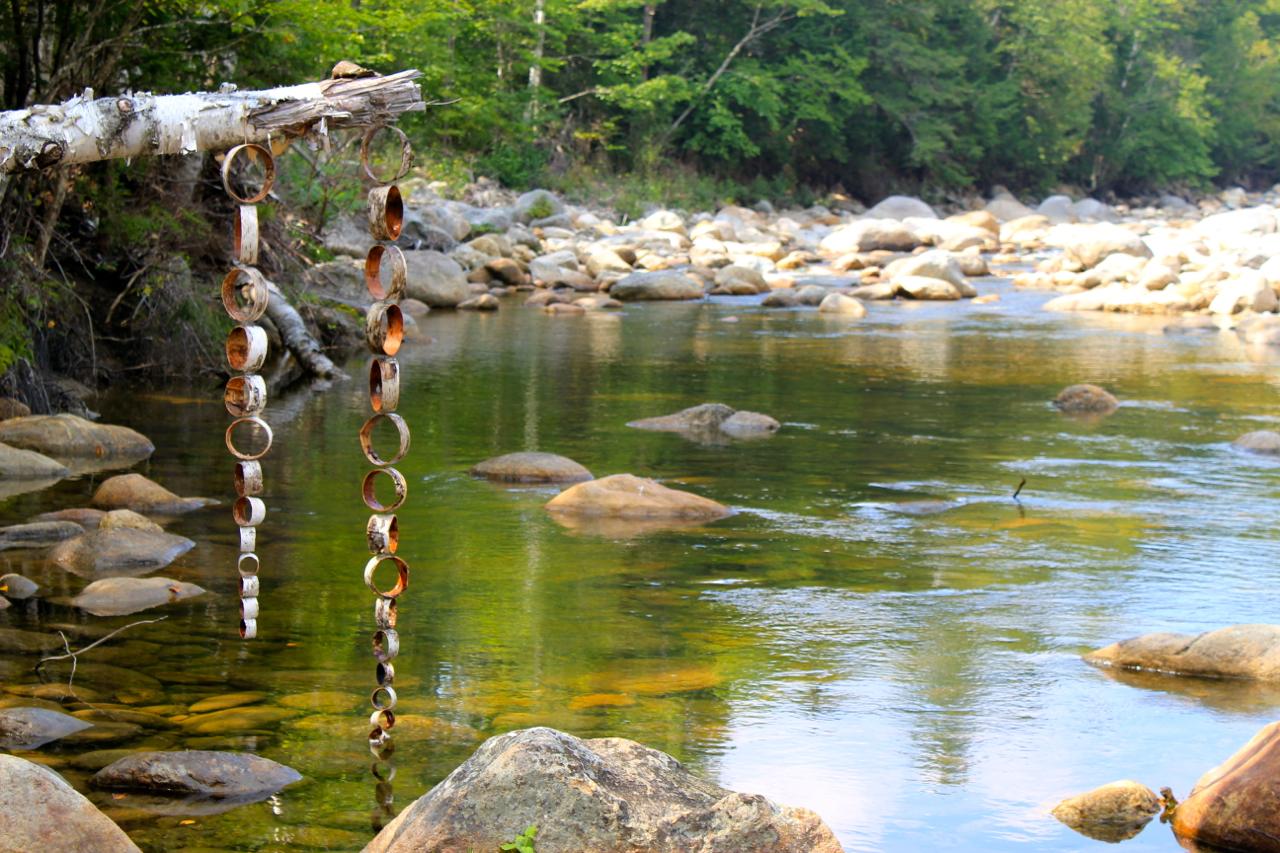 Birch Bark Series (Birch Portals upstream view)
