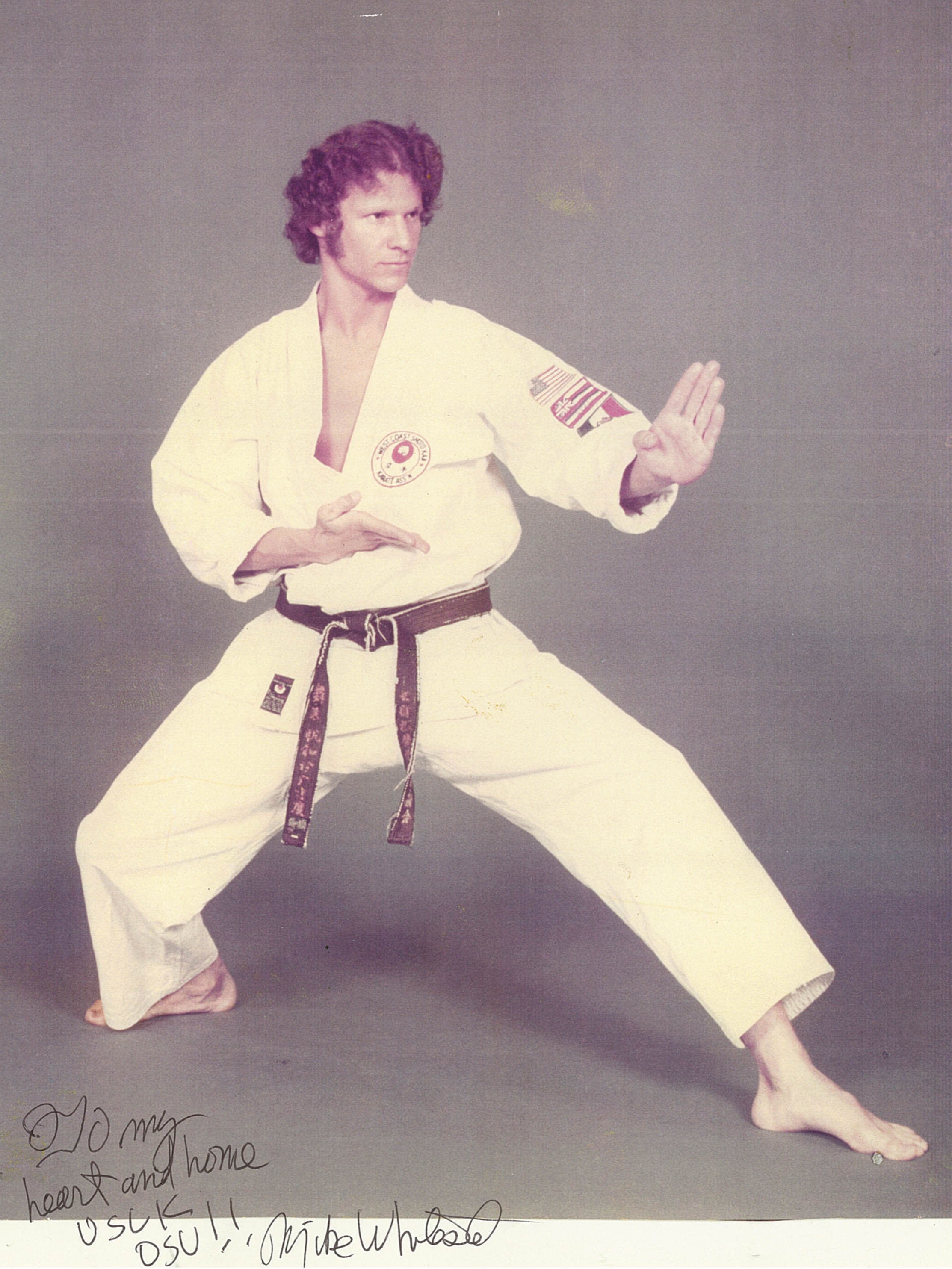 Sensei Mike Whiteside Long back stance.jpg