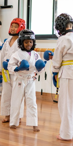 Little Tigers Karate   & Flying Tigers Karate -  for Ages 5-12
