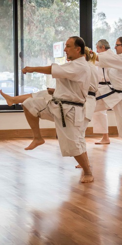Karate -   for Teens, Adults, and Seniors