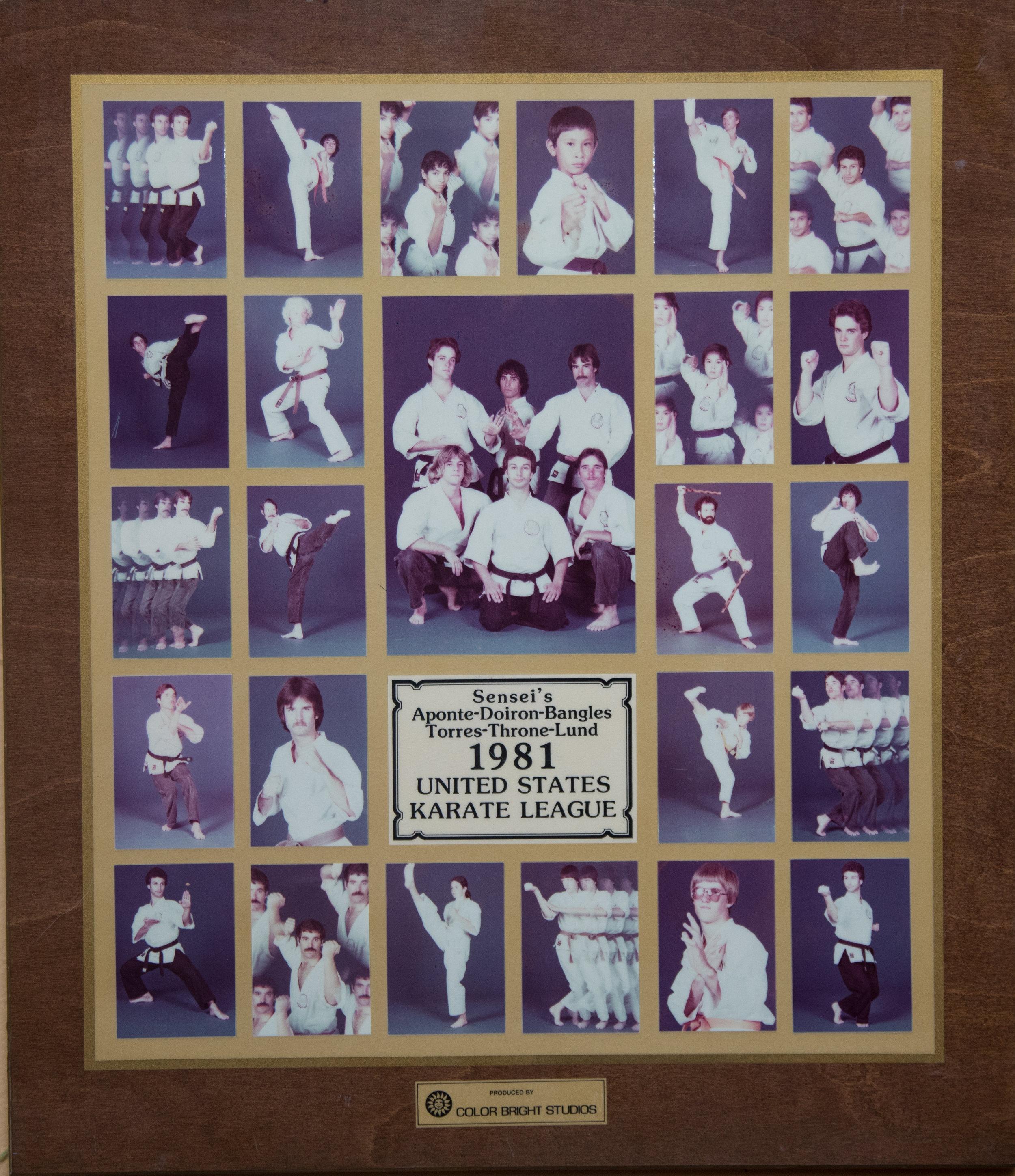 1981 plaque.jpg