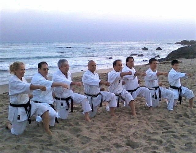 Malibu Beach Workout 2015  Left to Right: Lynn Aponte, James Augur, Leo Shortle, Vern Vaden, Ty Aponte, Robert Nunez, Keelan Aponte, and Max Chao-Haft