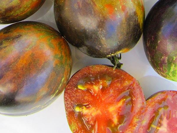 Cosmic Eclipse Artisan Tomato