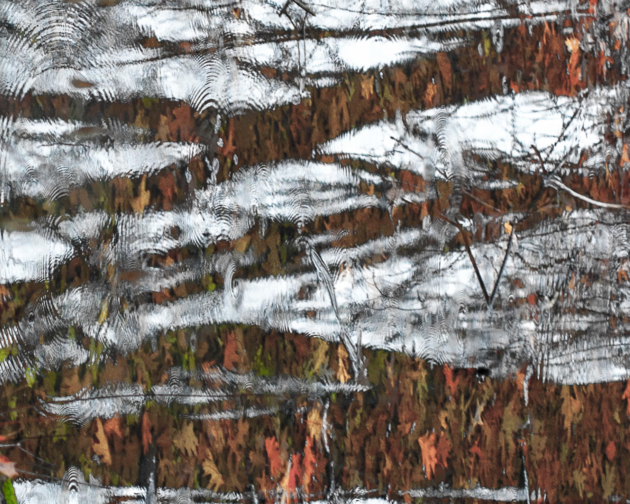 151214 Fall Ice Floe 8x10-0019.jpg