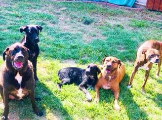 Porter, Sully, Newman, Barley and Riley.