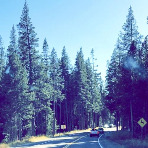 Johnson Pass - Jeep Adventure