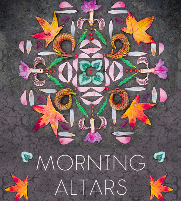 Beauty Alert: Morning Altars