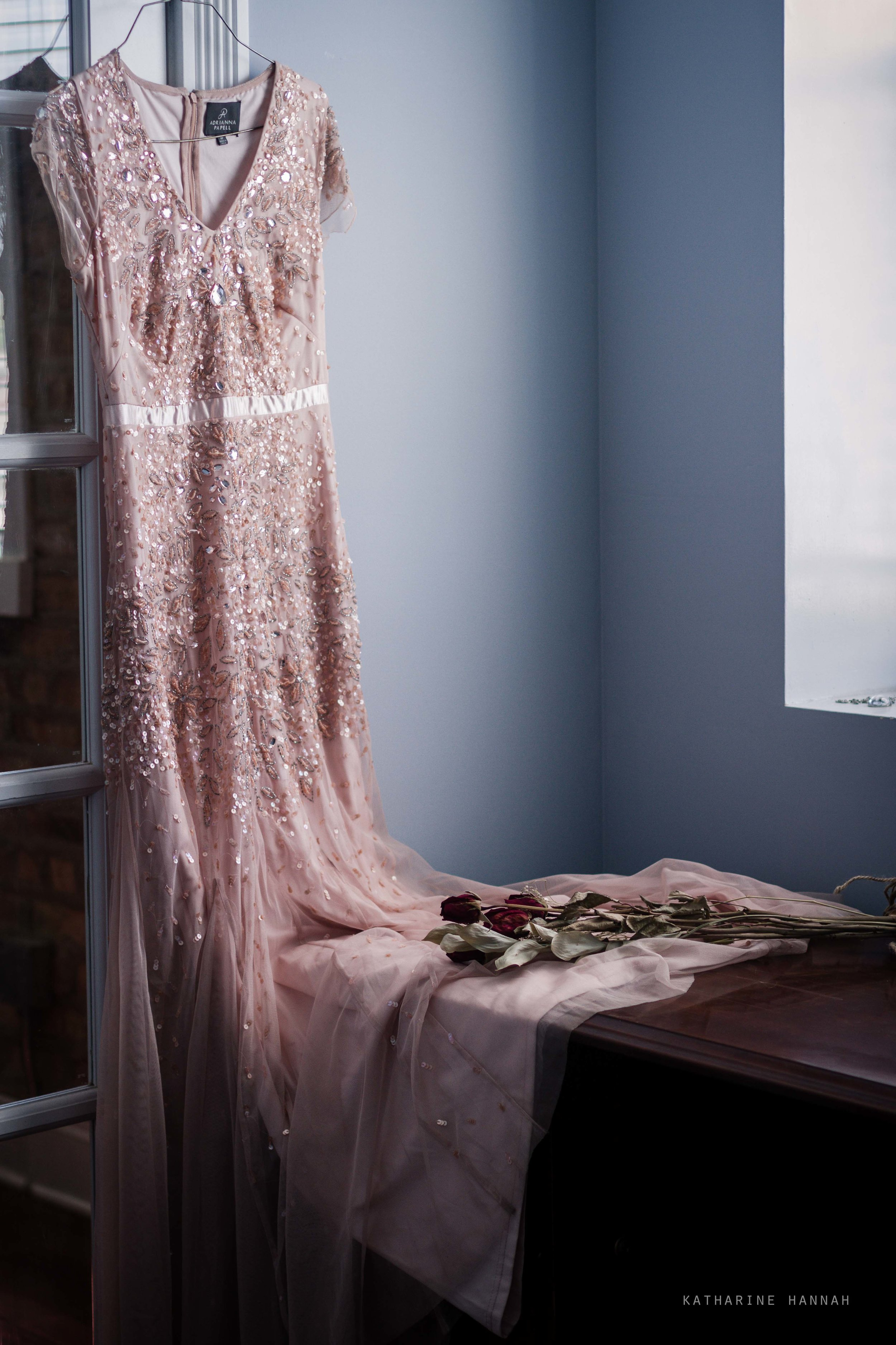 Adrianna Papell gown in Chicago photo studio