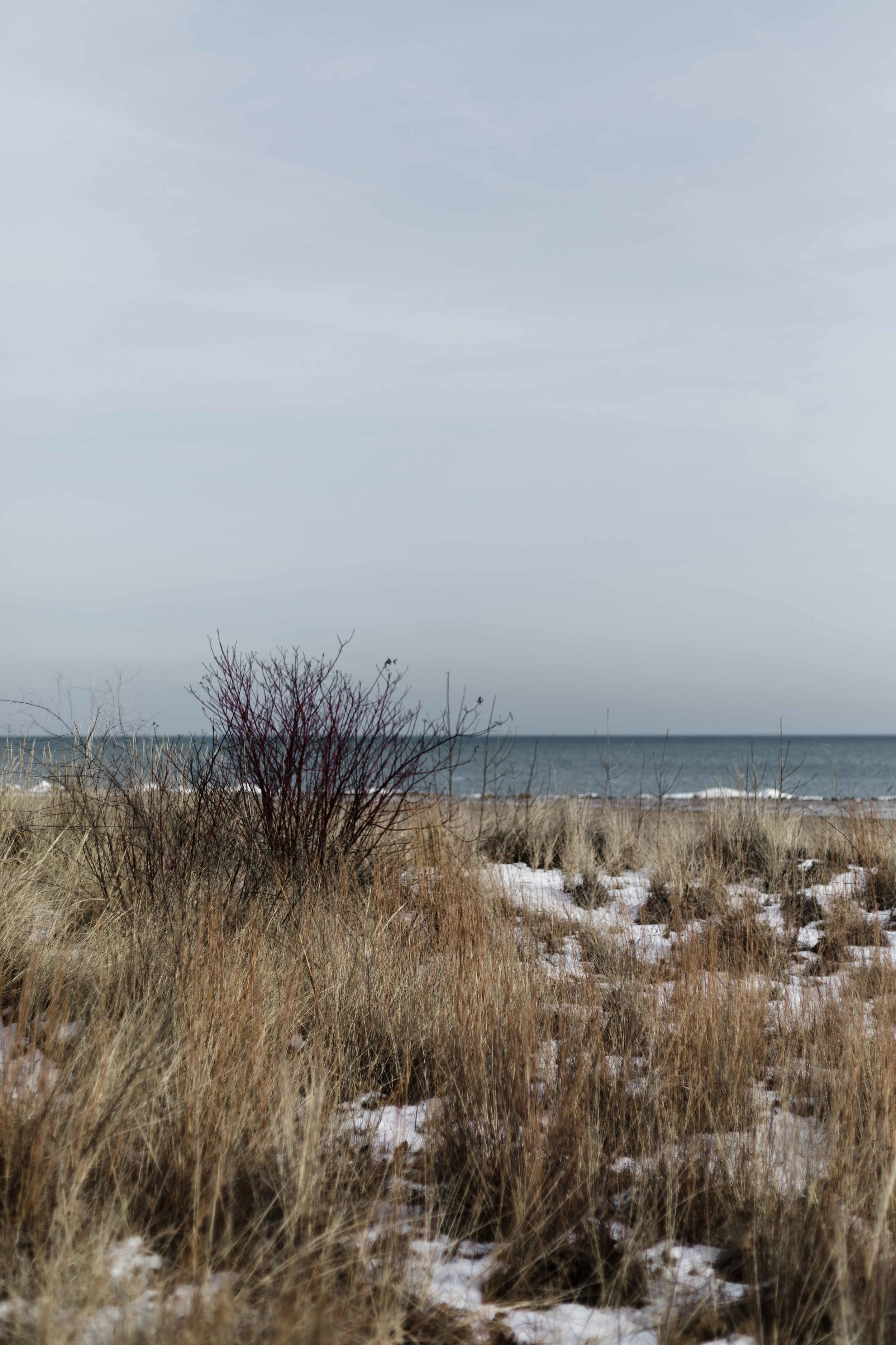 Evanston lakefront during Chicago winter