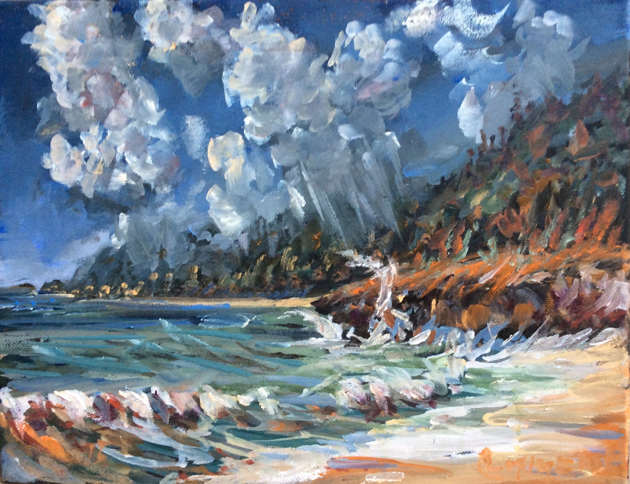 Hawaii  10 x 16 inches, oil on canvas